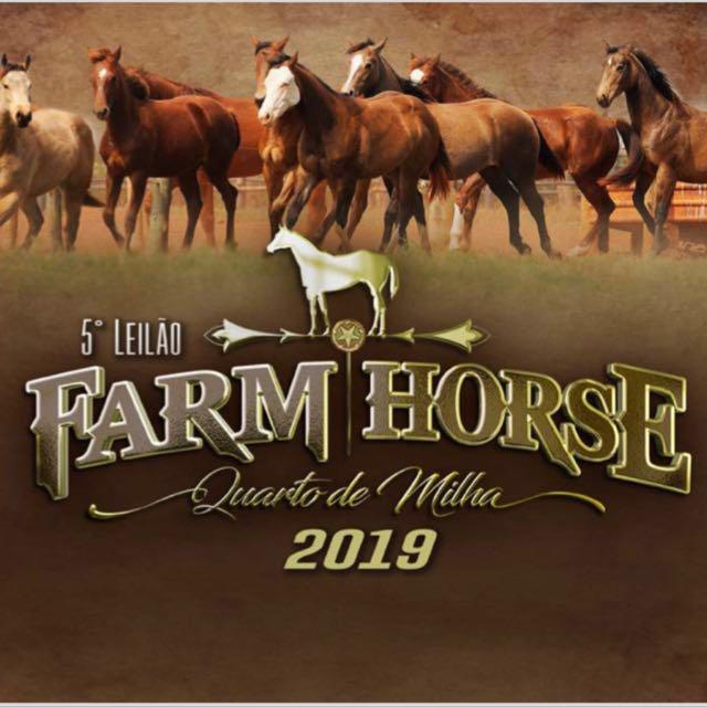 5° Leilão Farm Horse